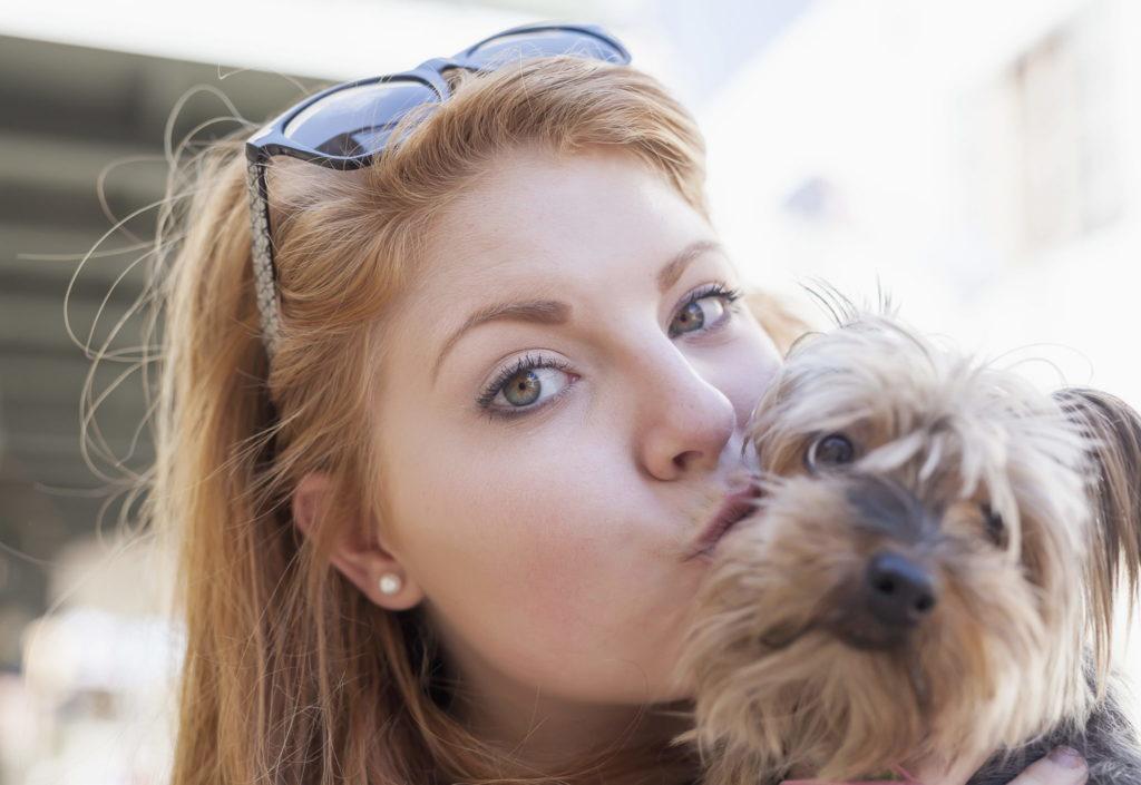 Pet Affection