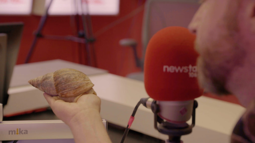 The Giant African Land Snail in Newstalk's studio