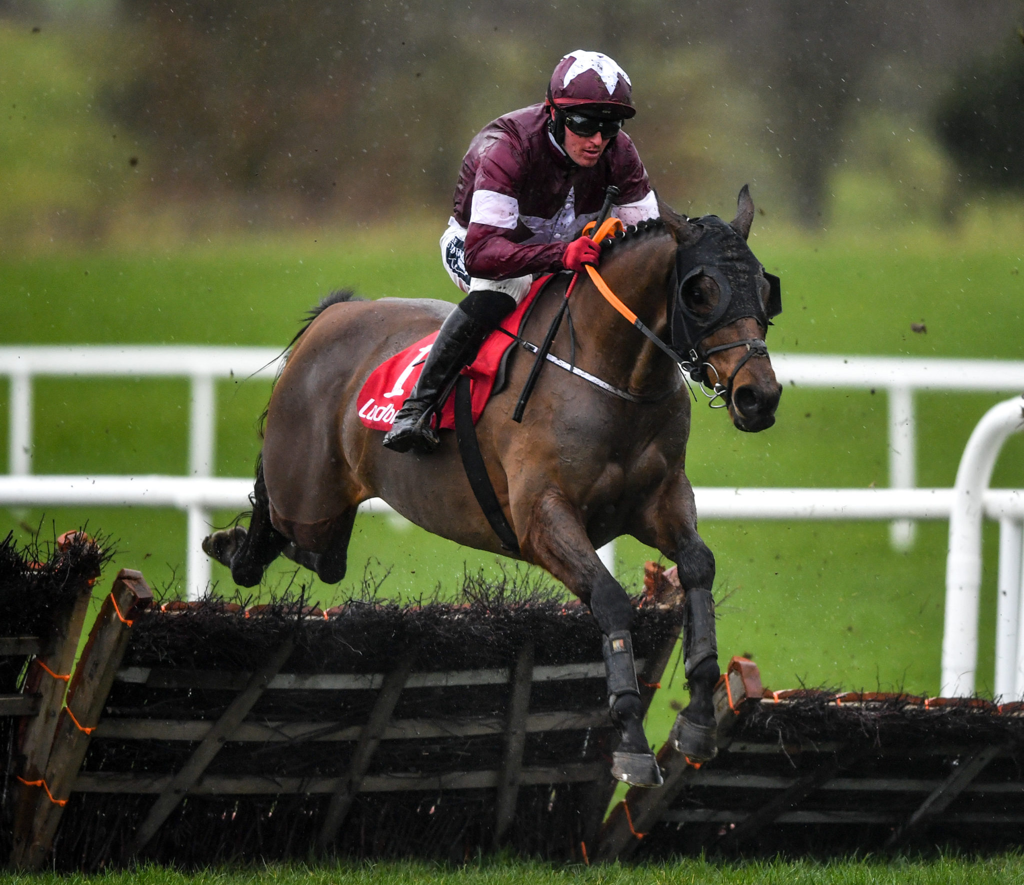 Keith Donoghue and Tiger Roll