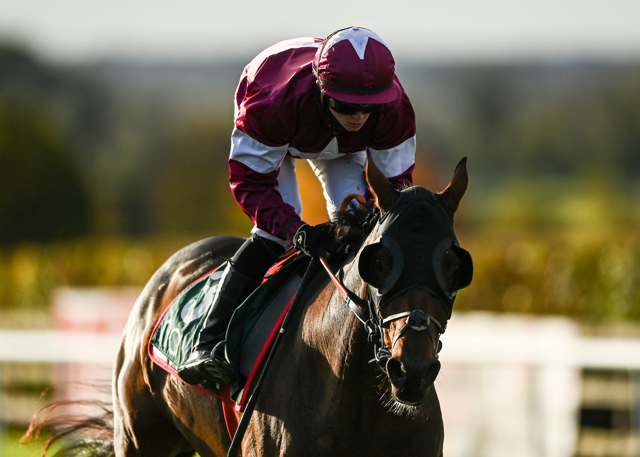 Tiger Roll and Sam Ewing