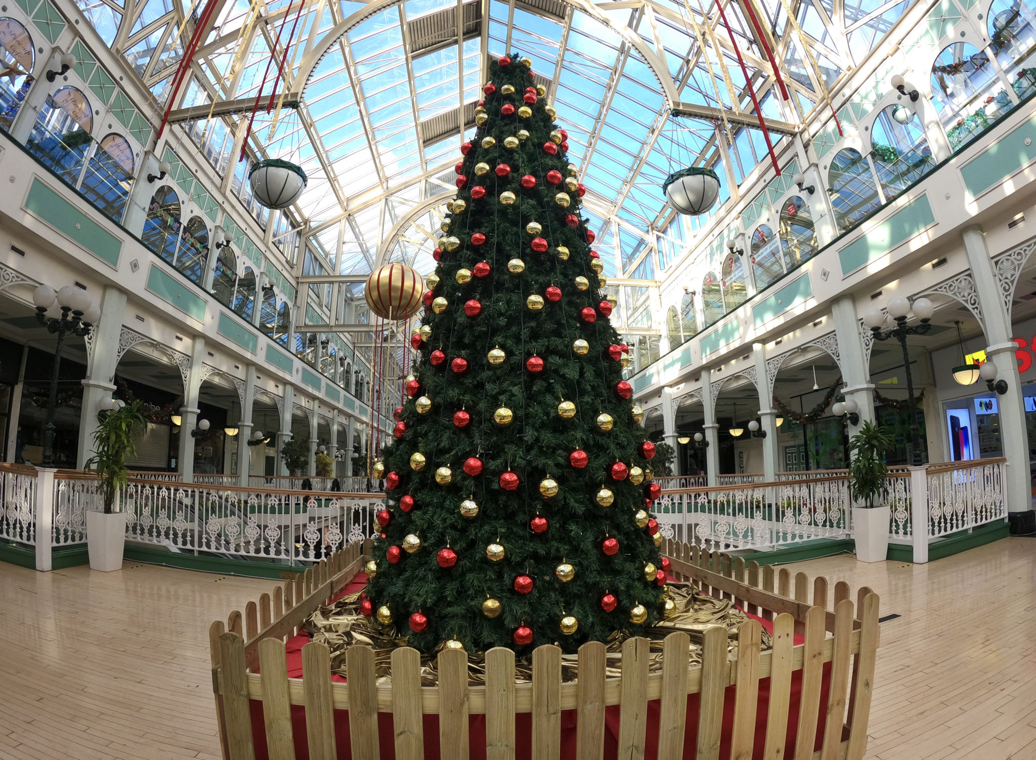 Take a look at your Christmas tree pics!