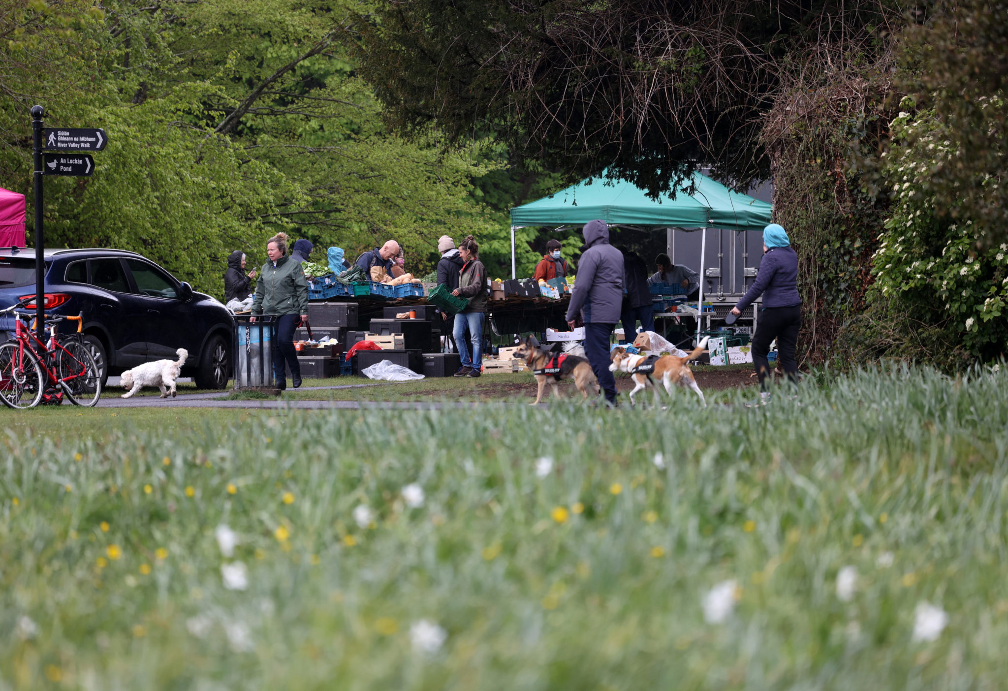 People enjoy shopping at the farmers market in St Annes Park in Dublin