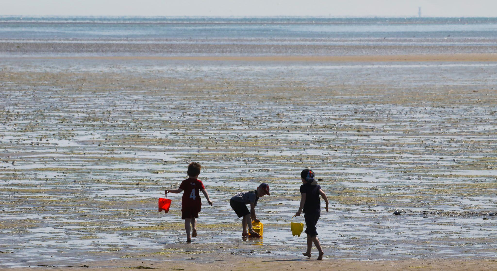 Children playing on Sandymount Strand in Dublin