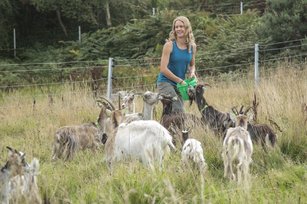 Goatherd Melissa Jeuken with her firefighting goats on Howth Head. Image: Orla Murray/Coalesce