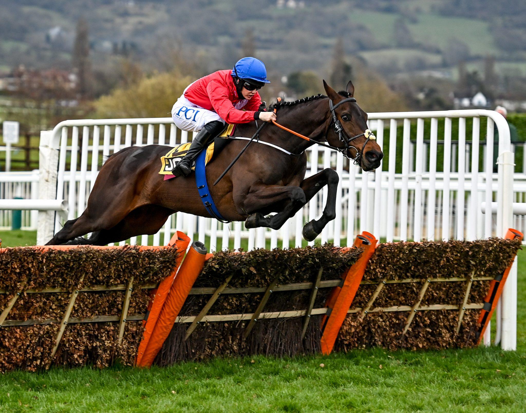 Blackmore Ireland Horse
